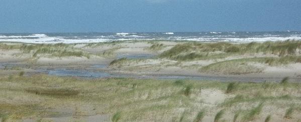 Landschaft Norderney